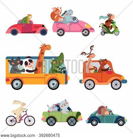 Animal Transport. Fun Cartoon Car, Drivers Traveling. Funny Bear Giraffe Fox Driving Bus, Taxi Truck