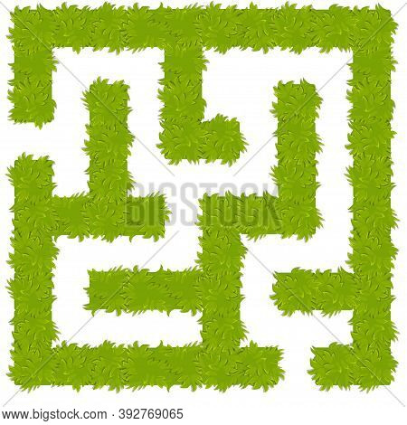 Education Logic Game Bush Labyrinth For Kids. Isolated Simple Square Maze.