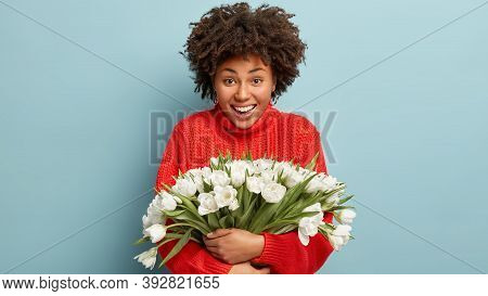 Waist Up Shot Of Glad Afro American Woman Smiles Gladfully, Wears Knitted Red Jumper, Embraces Bunch