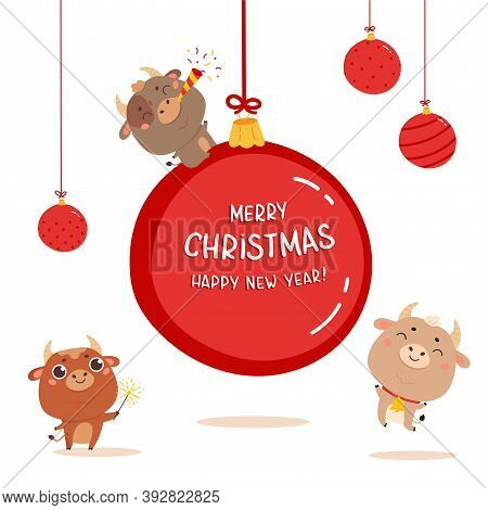 Christmas Sale Design Template. Three Funny Xmas Cute Ox With Giant Christmas Ball With Lettering. N