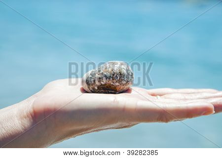 stone on the palm