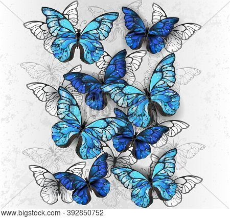 Vertical Composition Of Realistic, Blue And White Morpho Butterflies On Gray Textured Background. Mo