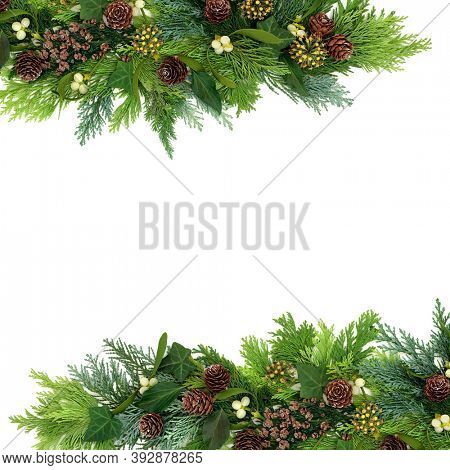 Natural winter greenery border with cedar cypress firs, mistletoe, ivy & pine cones on white background for Christmas & New Year. Flat lay, top view, copy space.