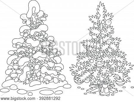 Snowy Fir In A Winter Forest And A Decorated Christmas Tree With Balls, Garlands And A Small Toy San