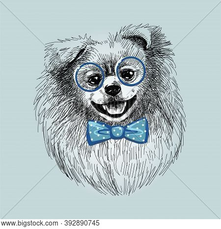 Pomeranian Dog In Fashionable Glasses And Bow Tie. Print Illustration For T-shirts, Postcards, Etc.