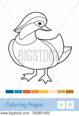 Colorless Contour Image Of A Mandarin Duck Isolated On White And Suggested Palette. Wild Birds Presc