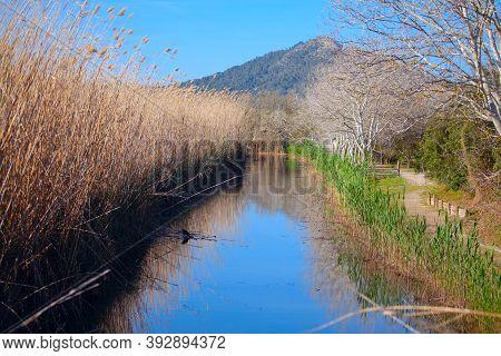 Parc Natural De S'albufera De Mallorca . Natural Park With Water Canal