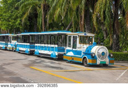 Excursion Train In The Park For Tourists Under The Palms
