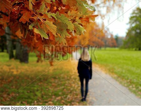 Selective Focus. Blurred Background. Backview Of Girl Walking In The City Park. Outdoor Autumn Portr