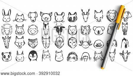 Animals Doodle Set. Collection Of Pencil Pen Ikn Hand Drawn Sketches Templates Patterns Of Elephant