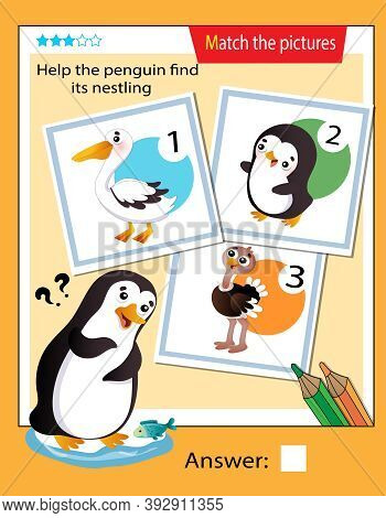 Matching Game, Education Game For Children. Puzzle For Kids. Match The Right Object. Help The Pengui