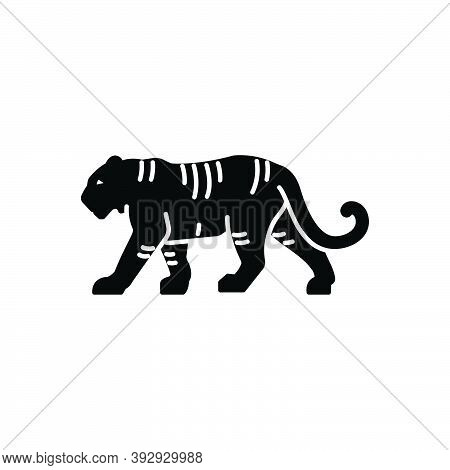 Black Solid Icon For Tiger Danger Aggressive Carnivorous Panther Nature Animal Jungle Wildlife Zoo