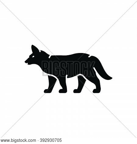 Black Solid Icon For Fox Omnivores Tail Clever Nature Animal Jungle Wildlife