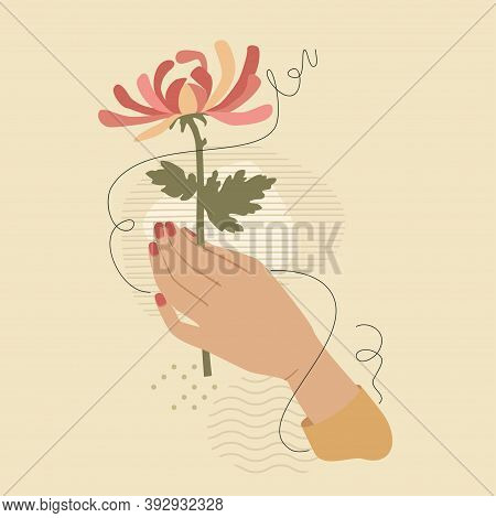 Hand With Pink Chrysanthemum Flower Over Modern Abstract Shapes. Vector Fashion Vintage Style Illust