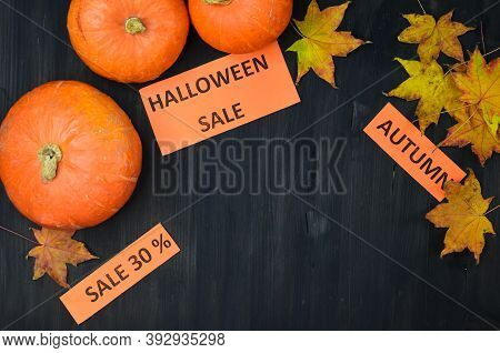 Autumn Ackground For Copy Space  Text Or Design, Vegetable Pumpkin Greeting Card, Thanksgiving Day S