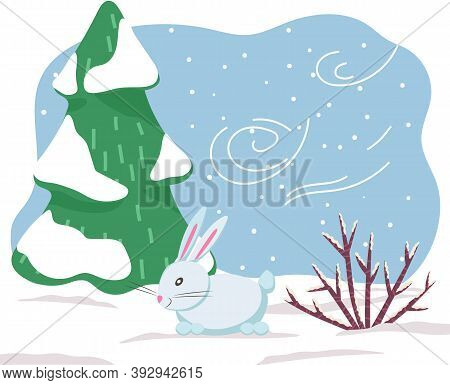 Single Animal Standing On Snowdrift In Winter Meadow. Hare Or Rabbit Walk Among In Snowy Wood. Chara