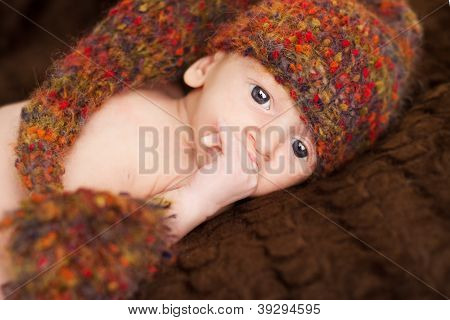 Newborn Baby Portrait In Brown Woolen Hat