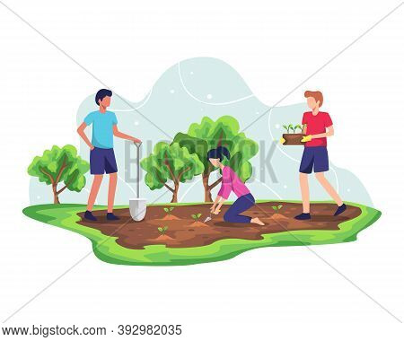 Forest Reforestation Concept. Planting Trees And Sustainable Ecosystem, Environmental Agriculture To