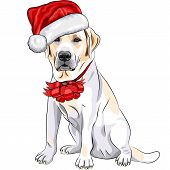 color sketch of the puppy dog Labrador Retriever breed in the red hat of Santa Claus with Christmas bow poster