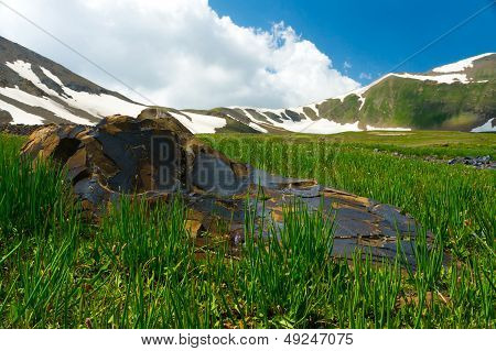 Mountains covered with snow, the big stone, a green meadow