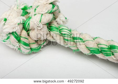 Close up shot of dog's rope toy