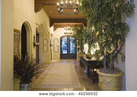 Lit chandeliers at entrance hallway along potted plants in modern house