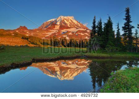 Mt. Rainier Reflections