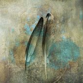 Two feathers close together in relationship. Photo based illustration. poster