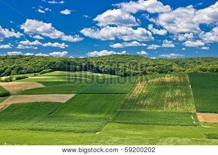 Beautiful Green Scenery Landscape In Spring Time Iv