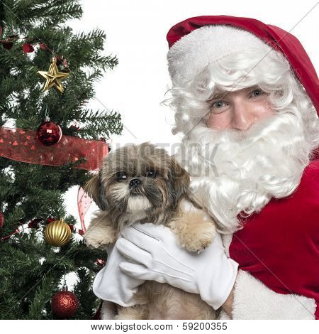 Close-up of Santa Claus holding lapdog, isolated on white