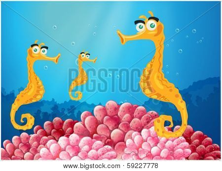 Illustration of the sea horses near the pink coral reefs on a white background