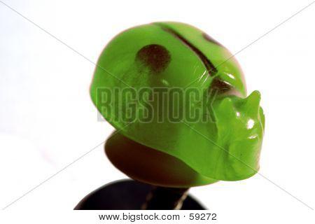 Green Lady Bug