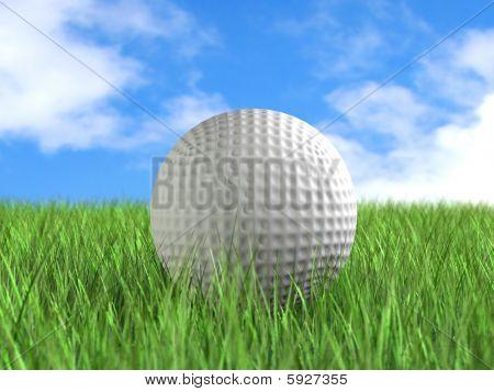 Golf Ball On Field