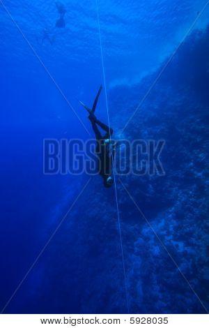 Freedivers