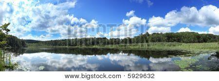 Panoramic Pond