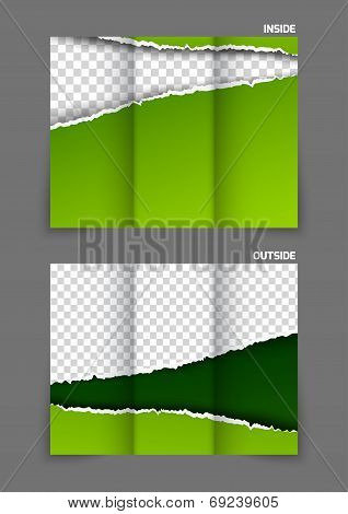 Torn paper tri-fold design brochure in green color poster