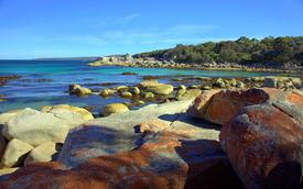 Lichen Covered Rocks near Bicheno, Tasmania