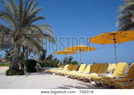 Sunbeds and umbrellas