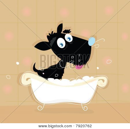 Black dog bath