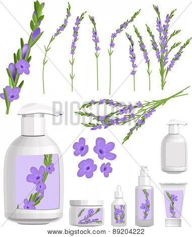 Lavender isolated on white. Cosmetic containers with lavender cream.