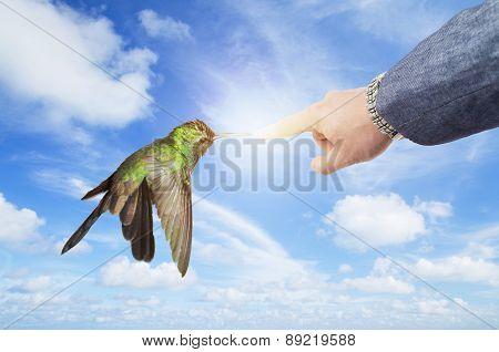 Male hand wearing business suit touching humming beak creating a flash