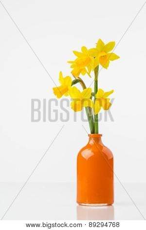 Tete A Tete Daffodils In Vase