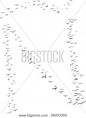 Bird Formation As N Tilde