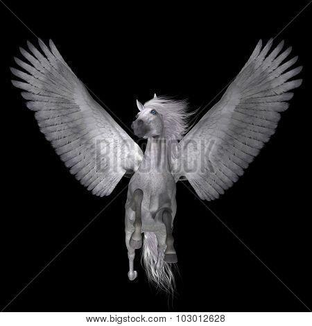 White Pegasus On Black