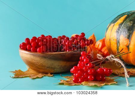 Fall Harvest On Aquamarine Shadowless Background
