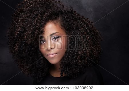 Beauty Portrait Of Young Girl With Afro.
