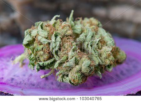 Godfather OG Medical Marijuana