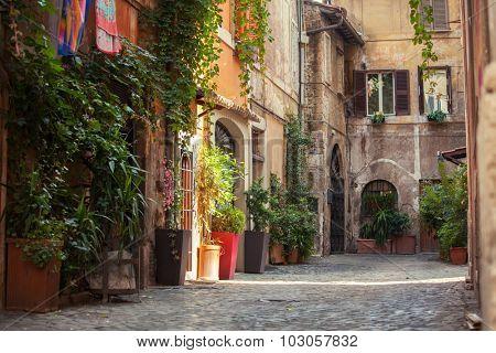 Roman street. Italy. old streets in Trastevere