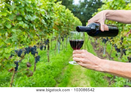 Hands Pouring Red Wine In Glass At Vineyard