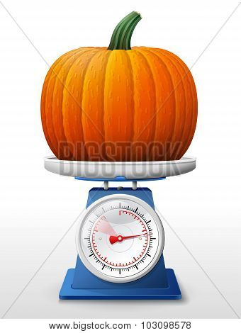 poster of Weighing winter squash on scales. Qualitative vector illustration for agriculture vegetables cooking halloween gastronomy thanksgiving olericulture etc. It has transparency masks blending modes gradients